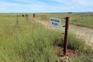 In verband met de jacht zijn veel terreinen in Extremadura uitgerasterd. (foto: Jacques van der Neut)