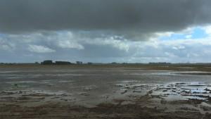 Door overvloedige regenval veranderde de Noordwaard in een wetland. (foto; Jacques van der Neut)