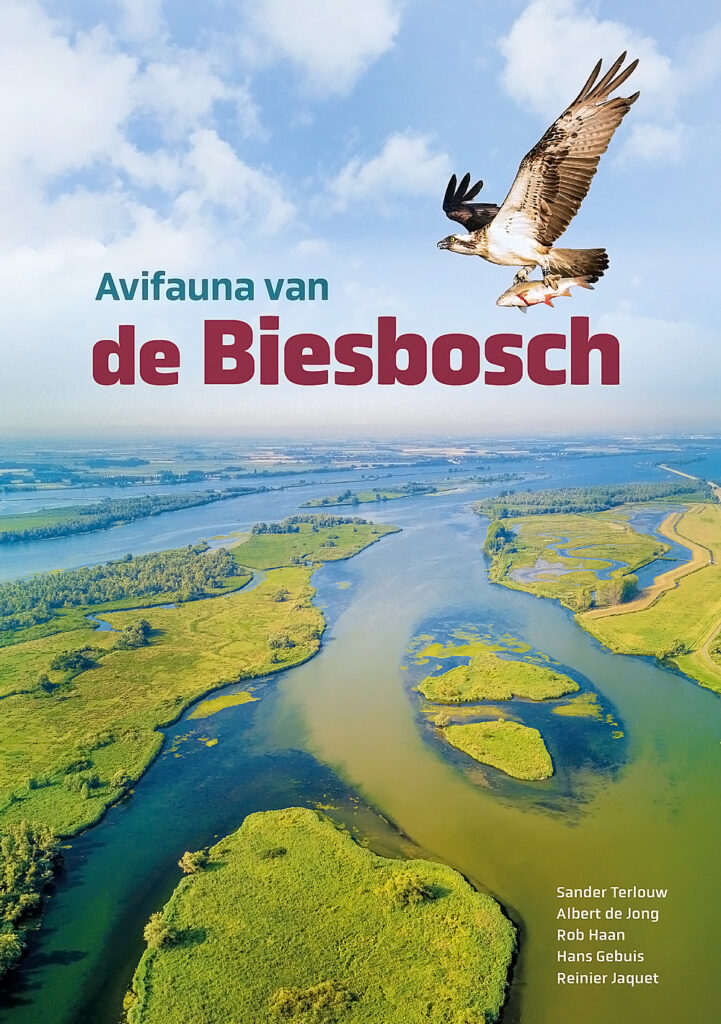 Deze afbeelding heeft een leeg alt-attribuut; de bestandsnaam is Omslag-Avifauna-van-de-Biesbosch-721x1024.jpg